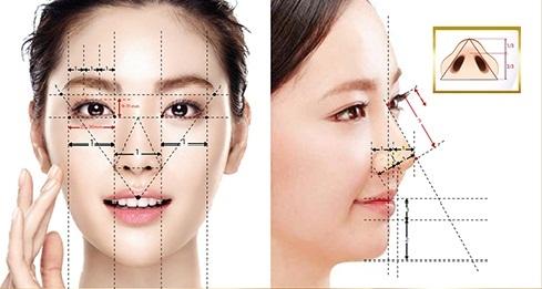 Cấu tạo của mũi và những chức năng không phải ai cũng biết - Ảnh 4