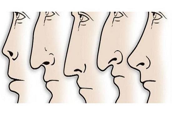 Xem tướng mũi Xấu - Tốt để đoán vận mệnh Sang - Hèn chuẩn xác - Hình 9