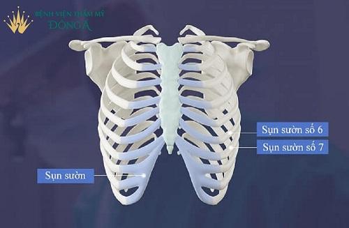 Nâng mũi cấu trúc 4D tự thân | Giá Cả song hành với Chất Lượng - Hình 3
