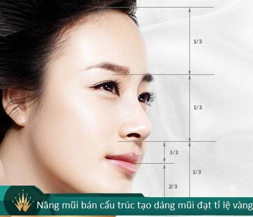 Nâng mũi bán cấu trúc - 7 Thông tin cần thiết cho Tín Đồ Làm Đẹp - Hình 1